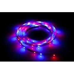 PELIKAN Oświetlenie LED -...