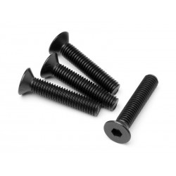 MAVERICK Flat Head Screw...