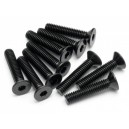 FLAT HEAD SCREW M4X20MM (HEX SOCKET/10PCS)